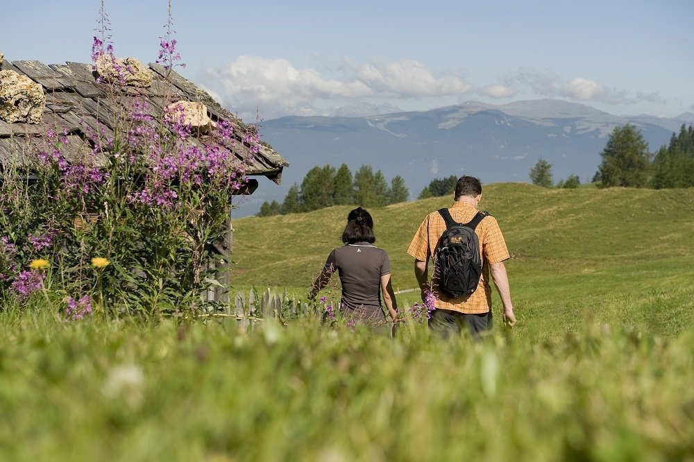 Enjoy spring in the Pusteria Valley at the Apartments Schnarf Lidia & Martin