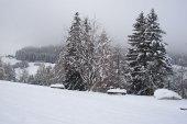galerie-winter-02