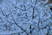 galerie-winter-11